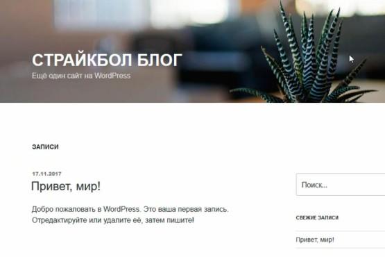 Как быстро создать сайт на движке wordpress