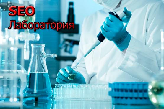 Курс Секреты практического SEO 2017 лаборатория